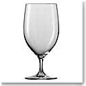 Schott Zwiesel Top Ten and Forte Water Glass - Iced Beverage, Single