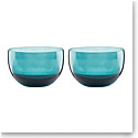Lenox Sprig And Vine Dinnerware Glass Dip Bowl Turquoise Pair
