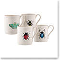 Belleek Curio 4 Mugs Set