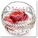 "Waterford Crystal, Jeff Leatham Fleurology Meg 8"" Crystal Rose Bowl"