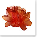 Daum Small Saffron Decorative Flower