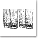 Galway Renmore Hiball Glasses, Set of Four