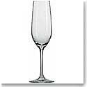 Schott Zwiesel Tritan Crystal, Forte Crystal Champagne Crystal Flute, Single