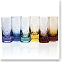 Moser Crystal Whisky Hiball 13.5 Oz. Set of 6 Ocean Life - Rainbow Colors