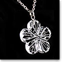 Cashs Ireland, Crystal Forget Me Not Pendant Necklace, Medium