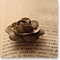 Premium Greeting Card, Clay Rose