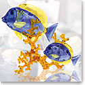 Swarovski Crystal, Paradise Doctorfish Couple Sculpture